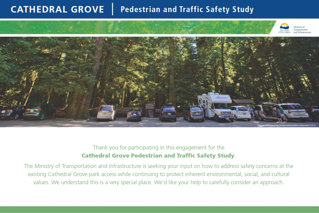 Introduction to the Cathedral Grove pedestrian and traffic safety study.