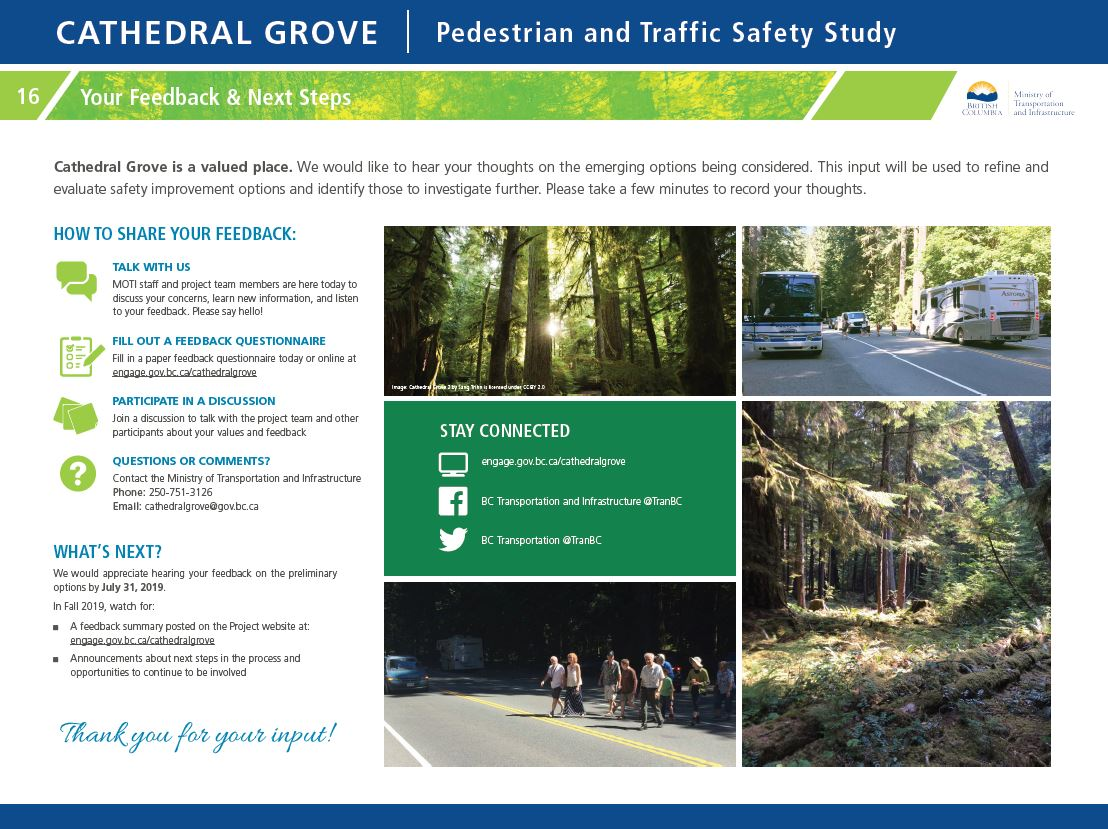 Your feedback and next steps. Cathedral Grove is a valued place. We would like to hear your thoughts on the emerging options being considered. This input will be used to refine and evaluate safety improvement options and identify those to investigate further. Please take a few minutes to record your thoughts. Announcements about next steps in the process and opportunities to continue to be involved in Fall 2019.
