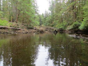 MacJack river
