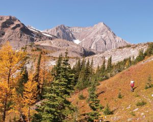 summerhikes-aug16_0