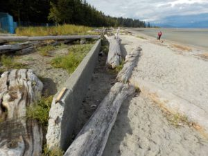 before-seawall-removal
